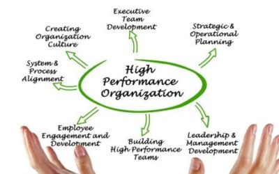 How wineries can build higher performing teams and improve productivity.